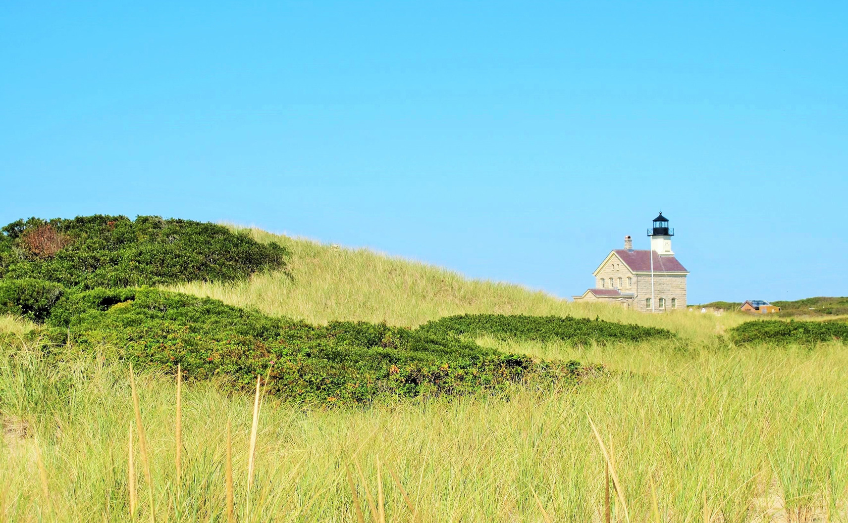 Lighthouse in a green field